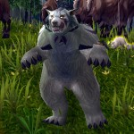 Dancing Guardian Druid
